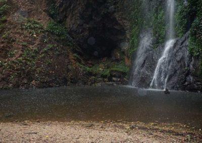 oase-im-regenwald